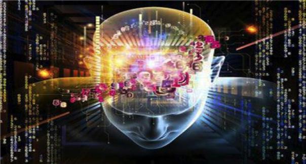 Beschreibung: enschliches Gehirn