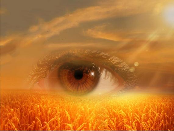 Beschreibung: http://quer-denken.tv/images/eye-pixabay.jpg